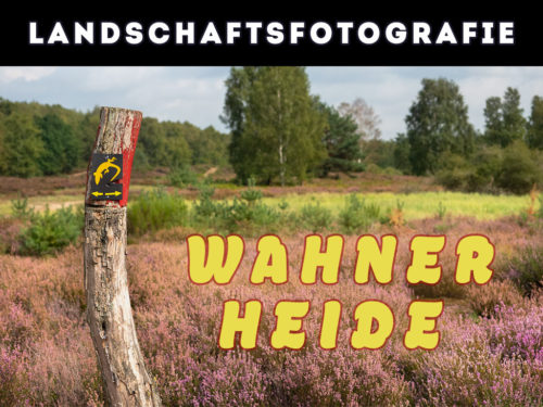Landschaftsfotografie Wahner Heide